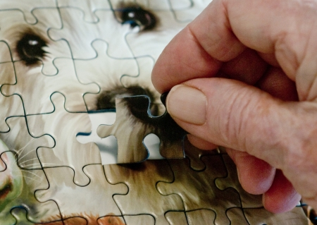 Elderly Woman Working Jigsaw Puzzle3