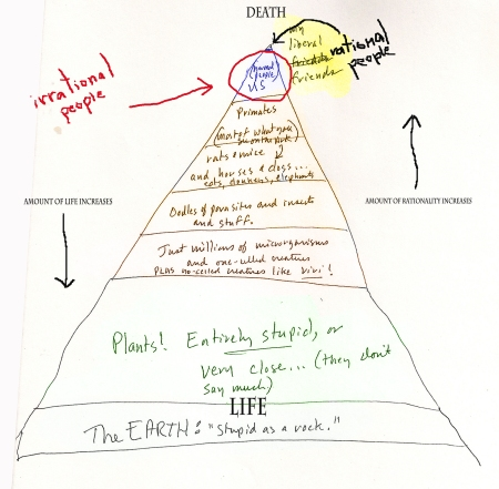 The Pyramid of Rational Thought