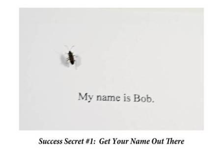 My-Name-is-Bob