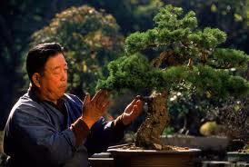 Japanese Gardener3
